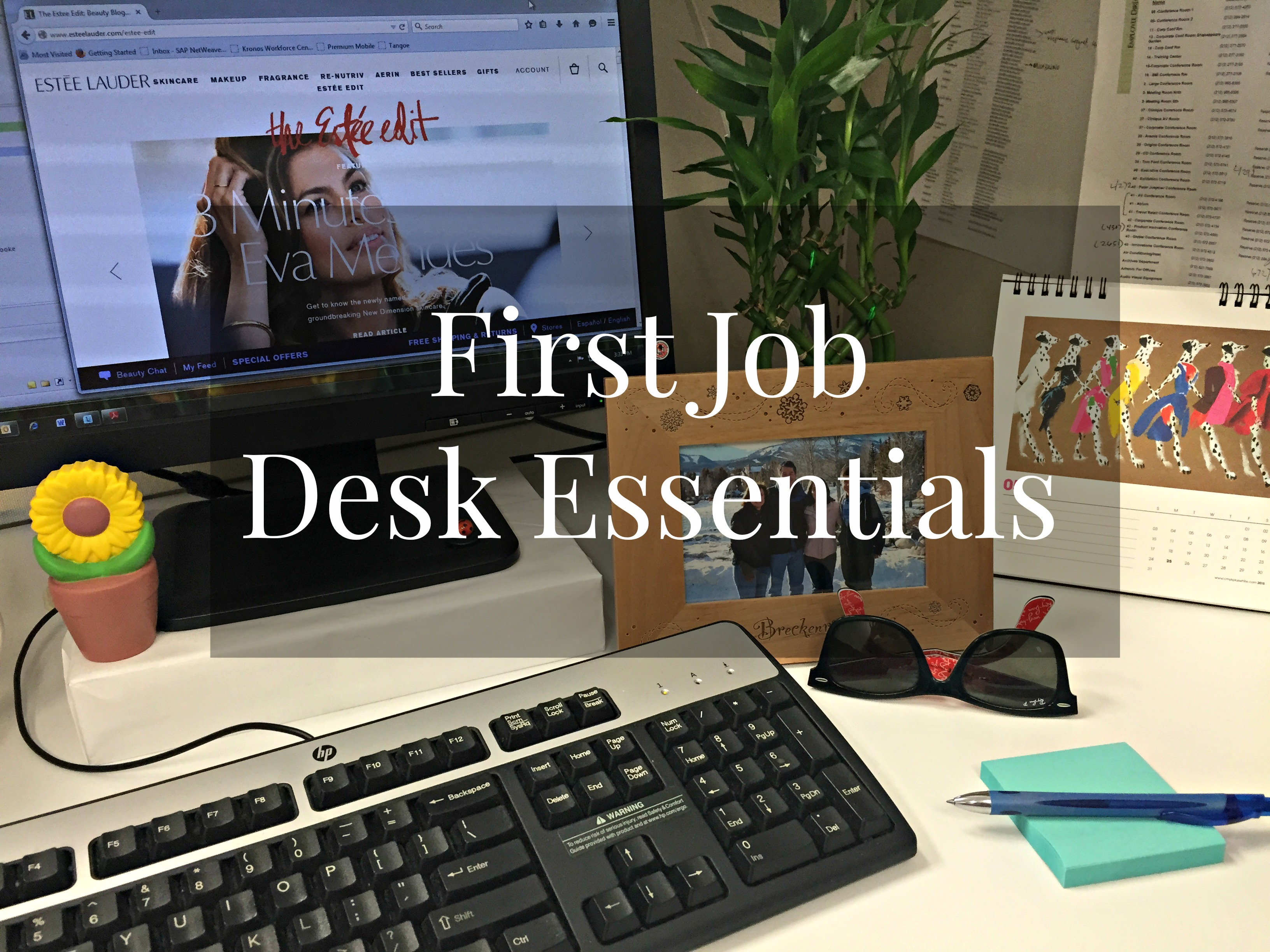 my office desk. first job desk essentials my office f